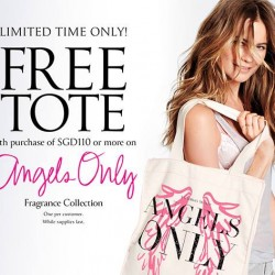 Victoria's Secret | FREE tote with purchase of $110