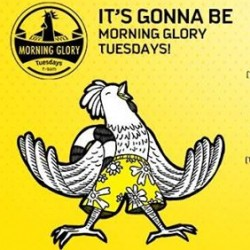 Scoot | Tuesday Morning Glory promo
