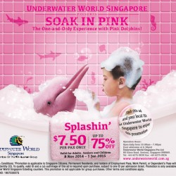 Underwater World | Soak In Pink Splashin' Promotion up to 75% off
