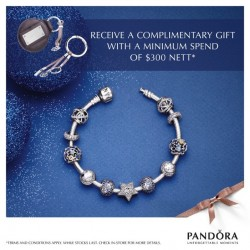 Pandora | Christmas gift with purchase and lucky dip