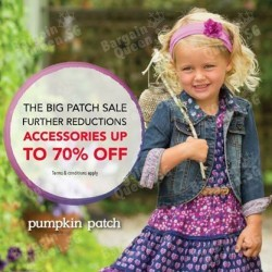 Pumpkin Patch | The Big Patch End Season Sale