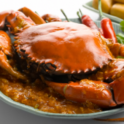 Park Royal on Beach Road Hotel: The Ultimate Crab Feast