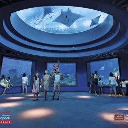 DBS/POSB: $50 off RWS Invites Attractions Membership for Two