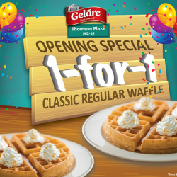 Gelare: 1 for 1 Classic Regular Waffle--Fan Page October