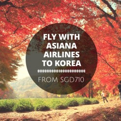 Asiana Airlines: Fly to Korea from SGD710