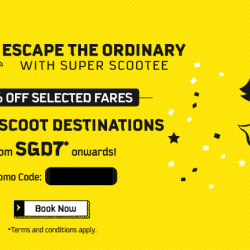 FlyScoot: 50% OFF Fares to All Destinations