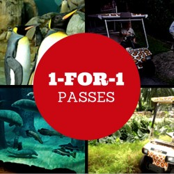 POSB Passion Card: 1-for-1 Passes to Jurong Bird Park, River Safari, Night Safari or Singapore Zoo & other Attractions