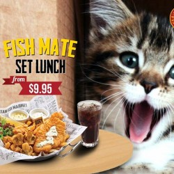The Manhattan FISH MARKET Singapore: Fish Mate Lunch Set from S$9.95 on weekdays