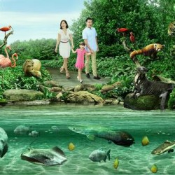 BeMyGuest: Coupon Code for 10% OFF on River Safari tickets