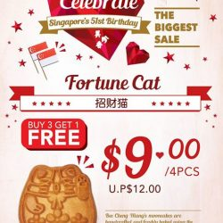 Bee Cheng Hiang: Celebrate Singapore's 51st with the Biggest Sale!