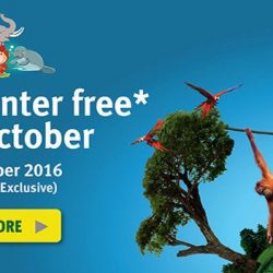 Wildlife Reserves Singapore: Kids Enter FREE this October At Jurong Bird Park/ River Safari/ Singapore Zoo for Local Residents