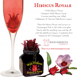 [Wild Hibiscus] Here's a lovely cocktail, ideal for holiday entertaining, and for toasting the New Year!  #hibiscus #holidayentertaining