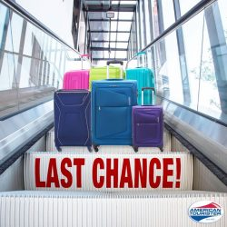[American Tourister] With such awesome deals lined up for you, don't diddle-daddle and pick your favourite luggage because now's