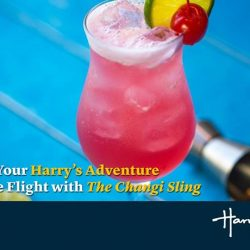 [Harry's Bar] Happy holidays! If you're flying off for a vacation over the long weekend, remember to kick start the merrymaking