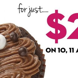 Twelve Cupcakes: $2 for One Cupcake!