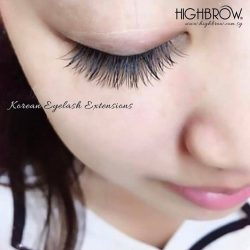 [Highbrow] Lashes full and soft designed to perfection to accentuate your eye beauty. Brow Enliven free consultation by brow specialists available