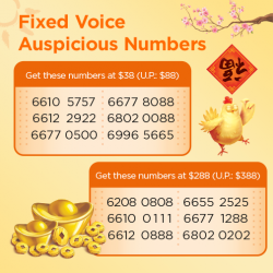 [M1] Usher in the Lunar New Year with an auspicious number for your home or office!Hurry grab your favourite number