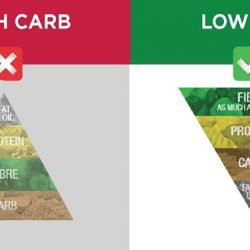 [Xndo] New Year Resolution - Leaner? Healthier? Back then, the Traditional Pyramid was higher in Carbs which can be easily stored as