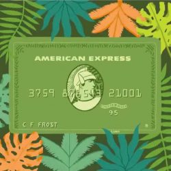 [American Express] Thanks for your Card Membership all days of the year. We hope you have a great start to 2017.