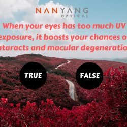 [Nanyang Optical]