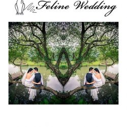 [THE FELINE BRIDAL] Feline Wedding Post Thank you for choosing us as your wedding partner Singapore Brides ! Visit us at #02-10a J