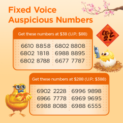[M1] Usher in the Lunar New Year with an auspicious number for your home or office!Hurry, grab your favourite number