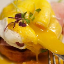 [The Providore] Golden goodness: your favourite eggs benedict fix is available this CNY weekend at our Mandarin Gallery and Raffles Place outlets,