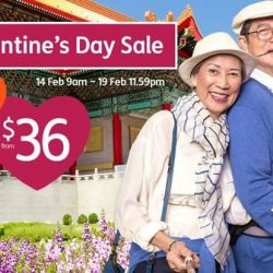 Jetstar: Valentine's Day Sale with All-In Sale Fares from $36!