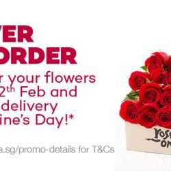 Lazada: Pre-Order Flowers by 12 February & Get FREE Delivery on Valentine's Day!