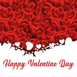 [Universal Traveller] We wish everyone a Happy Valentine Day! Spend this special day with your loved one!For those planning to confess