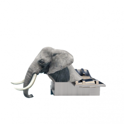 [American Express] SPOTTED: An elephant trying to get into a fridge at Harvey Norman.Head down to Harvey Norman flagship store at