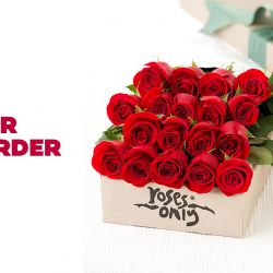 [Lazada Singapore] Pre-order your flowers by 5pm, 12th Feb and get FREE delivery on Valentine's Day! 🌹