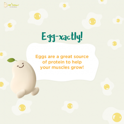 [Mr Bean Singapore] Eggs are great source of protein to help your muscles grow!