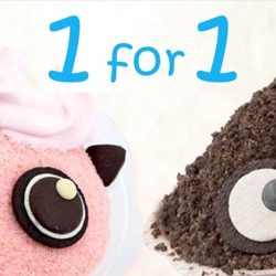 Bingsu: Get a FREE Oreo Bingsu with Any Bingsu Purchase for a Limited Time Only!