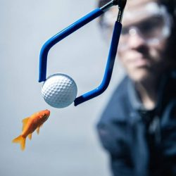 [Golf House Singapore] Cracking The Code Of Equipment's Most Enduring Urban Legends.