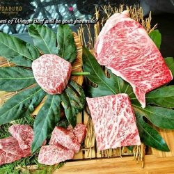 [Magosaburo] Which part of Wagyu Beef will be your favourite ?