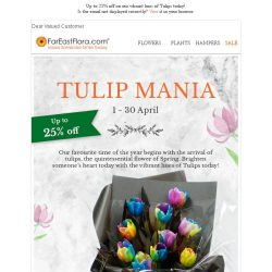 [FarEastFlora] Up to 25% off new arrivals of Tulips bouquets!