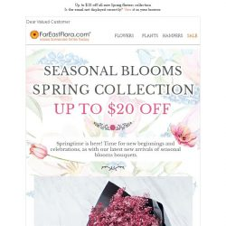 [FarEastFlora] Enjoy up to $20 off Springtime bouquets she's going to love!