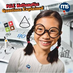 [Mind Stretcher Learning Centre] Everyone's got the past years' PSLE Mathematics questions.