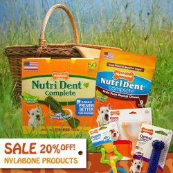 [Pet Lovers Centre Singapore] Nylabone range of dental chews and chew toys now on sale at 20% OFF selected products!