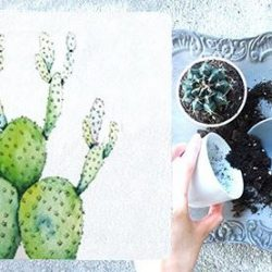 [Origins] Learn how to make your own little cactus terrarium and creative artwork with a twist this 14 April at Raffles