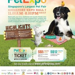 [Pet Lovers Centre Singapore] Pet Expo 2017 is only 4 days away!