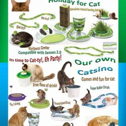 [Pets Kampong] This holiday don't let your feline friend be bore, bring some of these furbalous cat toys home.