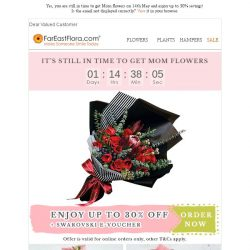 [FarEastFlora] Enjoy up to 30% off flowers & be the reason she SMILE this Mother's Day!