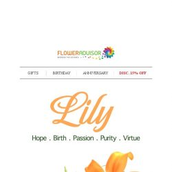 [Floweradvisor] FLOWERPEDIA: Lily for Raise Up Their Hope, Passion and Purity