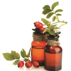 [Mt. Sapola] Rose hip oil is incredibly nourishing, making it truly the queen of all beauty oils.
