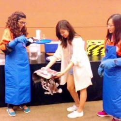 [Elements @ Play by Science Centre Singapore] Now that exam period is over, drop by ScienceCentreSG for some cold play!