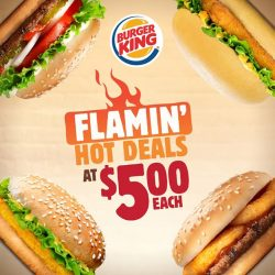 [Burger King Singapore] Complete your day with a $5 Flamin' Hot Deal on 05/05!