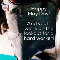 [Supermama] Happy Labour Day!