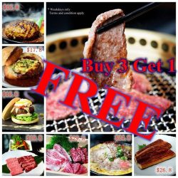 [Magosaburo] Surprised with our Lunch special promotion at Magosaburou!